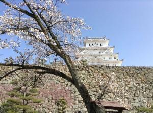securedownload 姫路城12